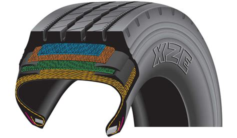 tire section tire cross section
