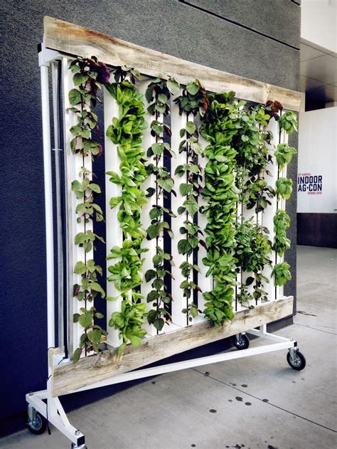 indoor hydroponic wall garden 115 best images about hydroponics on pinterest gardens