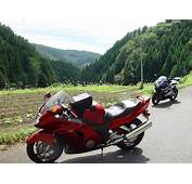Honda CBR 1100XX Super Blackbird Picture  30365