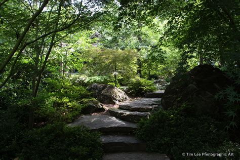 How To Build A Backyard Garden File Garvan Woodland Gardens Japanese Garden Jpg