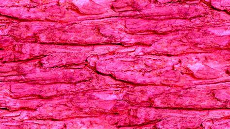 wallpaper pink rock pink seamless rock wall background free stock photo
