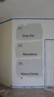 grey vs gray color gray owl moonshine heavy goose rosemont dr