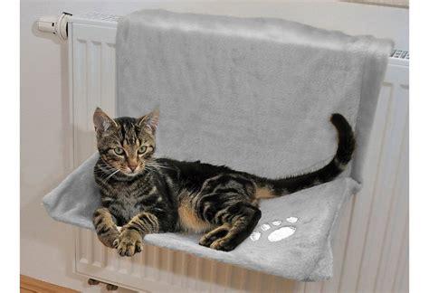 Bilder Flöhe by Fl 195 182 He Bei Katzen Fl He Katze Einebinsenweisheit