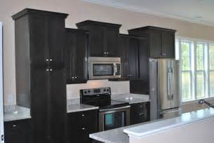Black Kitchen Cabinets Flat Black Kitchen Cabinets Interior Exterior Doors