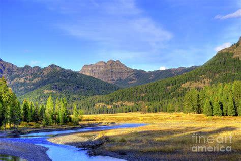 yellowstone landscape yellowstone national park landscape photograph by juli scalzi