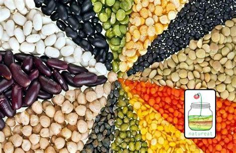 alimenti con ferro per vegetariani alimenti ricchi di ferro archivi natureat ricette vegan
