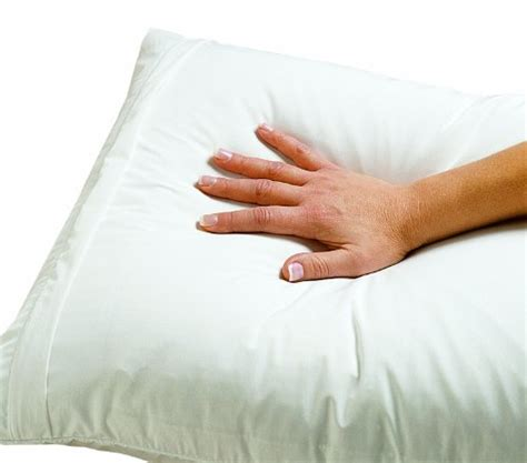 Am I Allergic To Pillow by Dust Mite And Allergen Proof Pillow Encasing Quot Premium