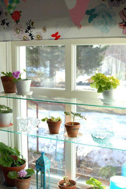 kitchen window shelves 25 best ideas about kitchen window shelves on