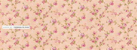 2560x1440 magnolia flowers bloom channel cover channel 2048x1152