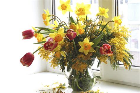 mazzo di fiori con mimose con la mimosa facciamo il mazzo di fiori di primavera