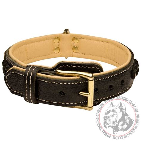 pitbull puppy collars get adjustable padded leather pitbull collar designer gear