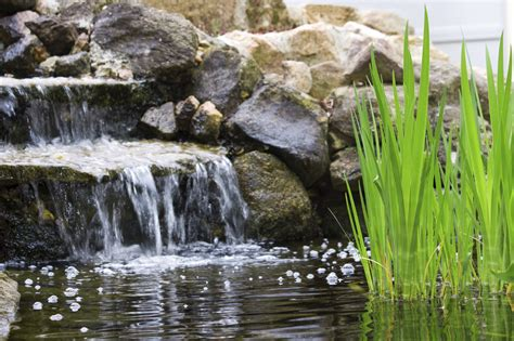 How To Build A Backyard Pond And Waterfall by Backyard Pond Waterfalls How To Build A Pond Waterfall In The Garden