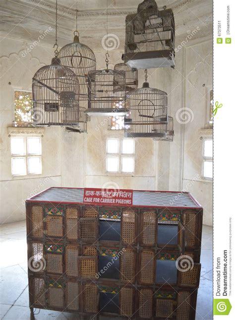 gabbie per colombi nido doppio in legno da esterno per colombi e piccioni con