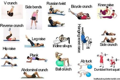 exerciseees motivation crunches charts and types of