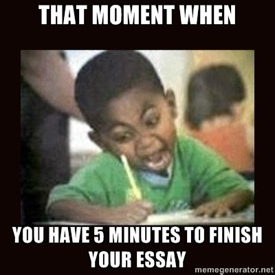 Essay Memes - memes somethingfunnyandwitty