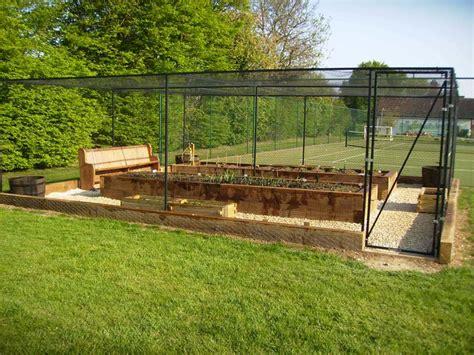 raised bed irrigation steel fruit cage raised vegetable beds irrigation and decorative gravel floor