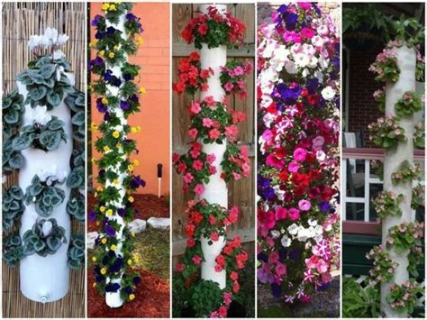 Vertical Pvc Garden Diy Vertical Pvc Planter Total Survival