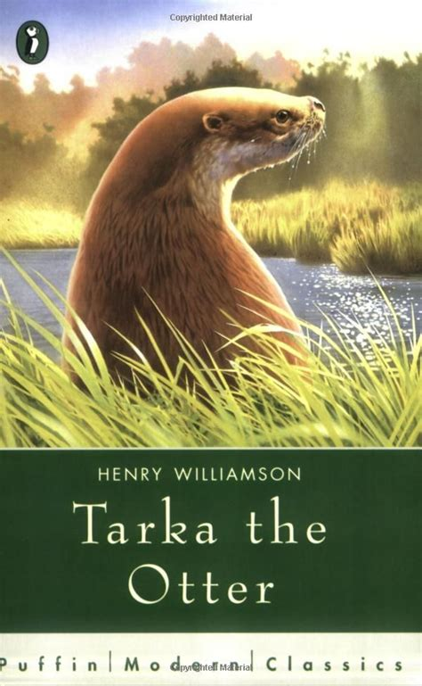 tarka the otter a 55 best images about henry on moon river mary boleyn and portrait