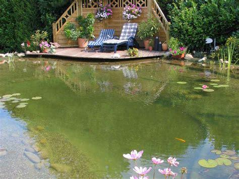 Garten Mit Schwimmteich by Vorteil Schwimmteich Gartenteich Planung Bau Und Pflege