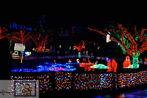 Still Time For Holiday Fun At The Oregon Zoo Zoolights Oregon Zoo Lights