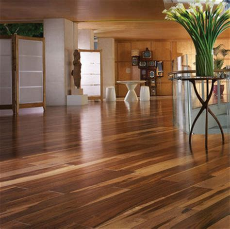 Linoleum Flooring Minneapolis St. Paul Bloomington Apple