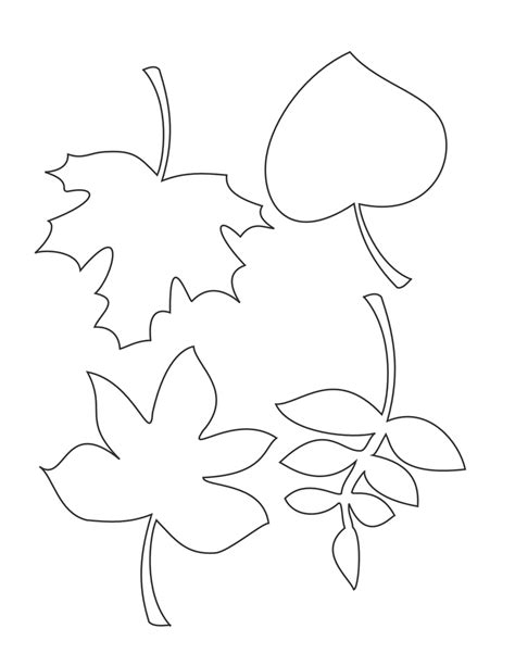 fall leaf template autumn leaf stencil clipart best