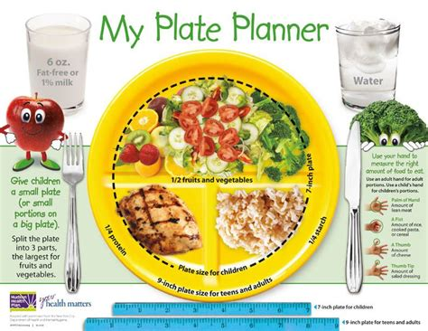 portion template my plate planner great visual resource healthy living