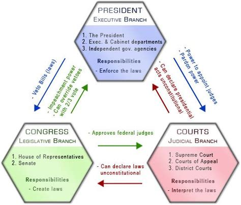 Government Background Check Branches Of Government Diagram Color Coding Checks And Balances Education
