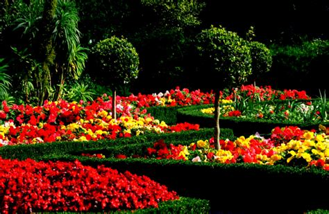 garden images amazing beautiful gardens with colorful flowers and trees