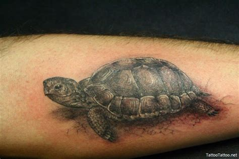 tortoise tattoo turtle meaning