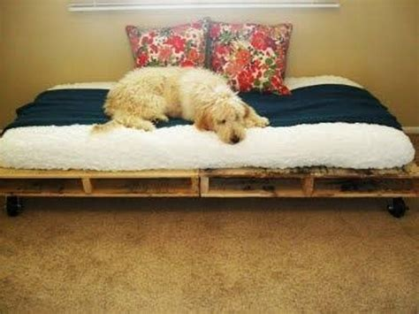 what muscles does benching work diy large dog bed 28 images diy large dog bed home design ideas easy and