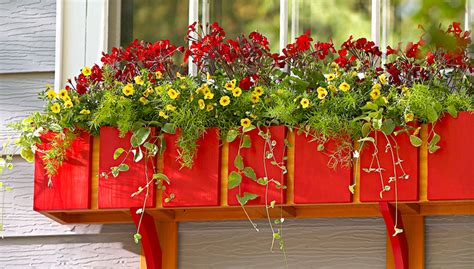 lowes window flower boxes diy window box