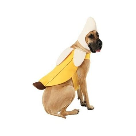 banana for dogs chiquita banana costume dogs images