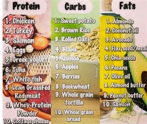 healthy fats co foods rich in carbohydrates and fats foodfash co