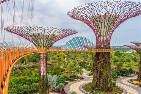 Singapore Gardens By The Bay - guest photo gallery travelonapp