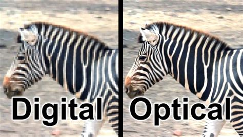 zoom digital the difference between digital zoom optical zoom