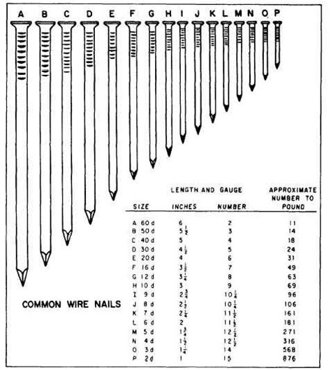 acceptable nail length figure 3 76 nail sizes given in penny d units