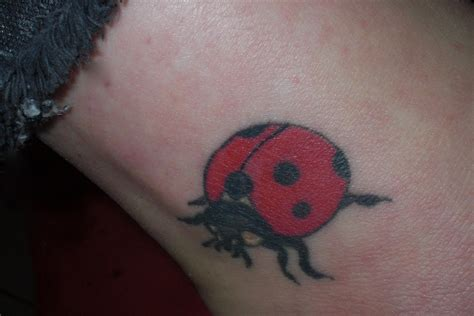 ladybug tattoo designs foot ladybug tattoos designs ideas and meaning tattoos for you
