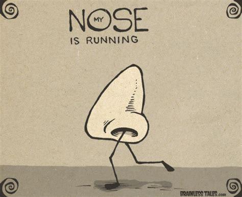 nose running chowderhead soda brainless tales