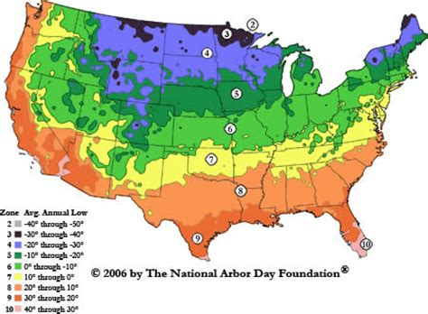zone 10 gardening hardiness zone search bgi premium plant foods