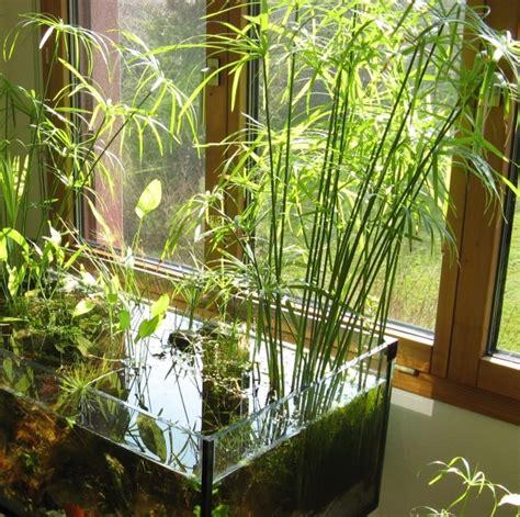 Permalink to indoor garden mini – 24 of The Most Beautiful Ideas on Indoor Mini Garden to Collect   Homesthetics   Inspiring ideas