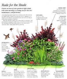 Landscape Design Zone 4 25 Best Ideas About Shade Garden On Shade