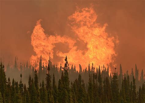 Alaska Judiciary Search Yes Scientists Say Alaska Wildfires Linked To Climate Change