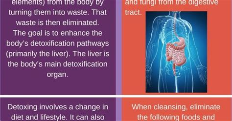 Detox Real Vs by Detox Vs Cleanse Their Differences And Benefits Detox