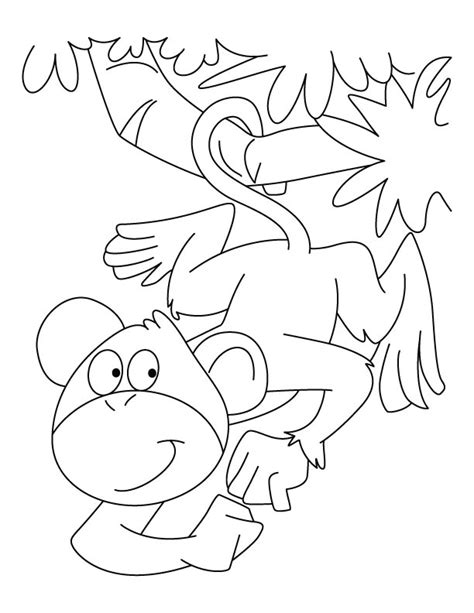 spider monkey coloring pages download free spider monkey