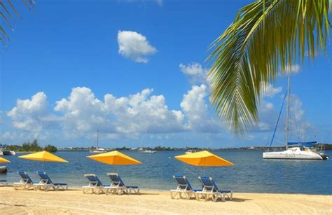 le flamboyant hotel and resort cheap vacations packages tag vacations