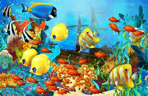 wallpaper colorful fish and interactive water fish corals underwater ocean tropical sea g wallpaper