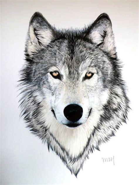 imagenes en blanco y negro de un lobo 17 mejores ideas sobre tatuaje de lupus en pinterest
