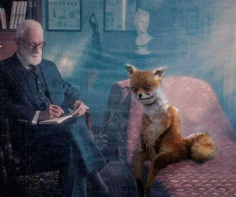 Taxidermy Fox Meme - stoned fox gets a chilly reception in st petersburg as