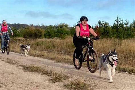 sled dog racing queensland